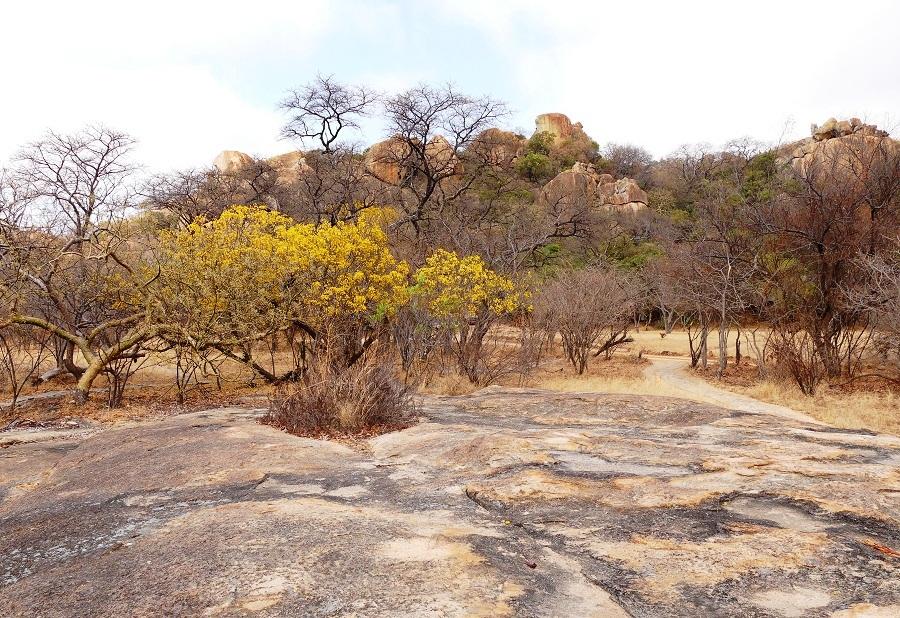 Granitfelsen im Matobo Nationalpark