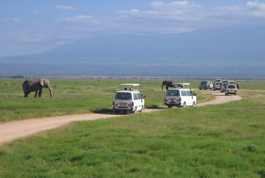 Minibus Safari im Amboseli