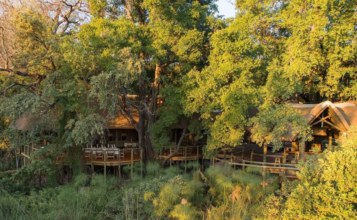 Gut geschützt unter Bäumen - das Camp Moremi in Botswana