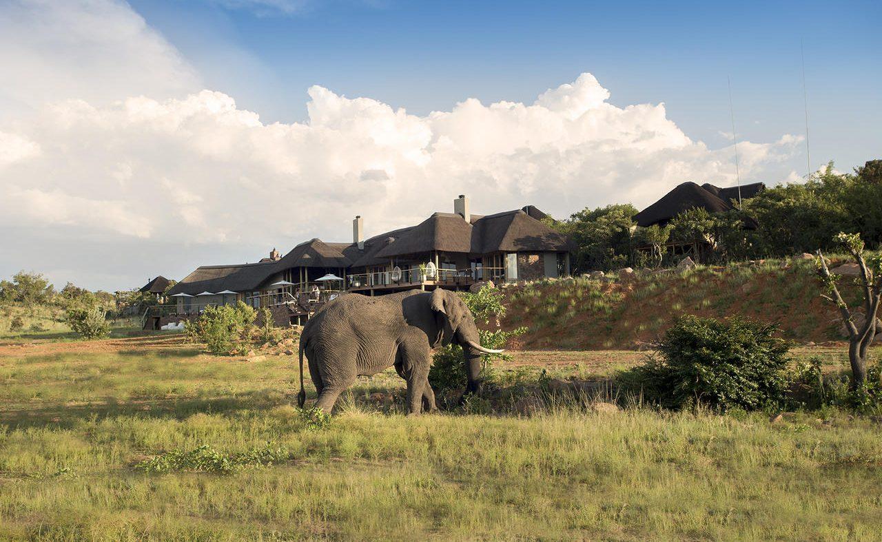Elefant vor der Mhondoro Lodge