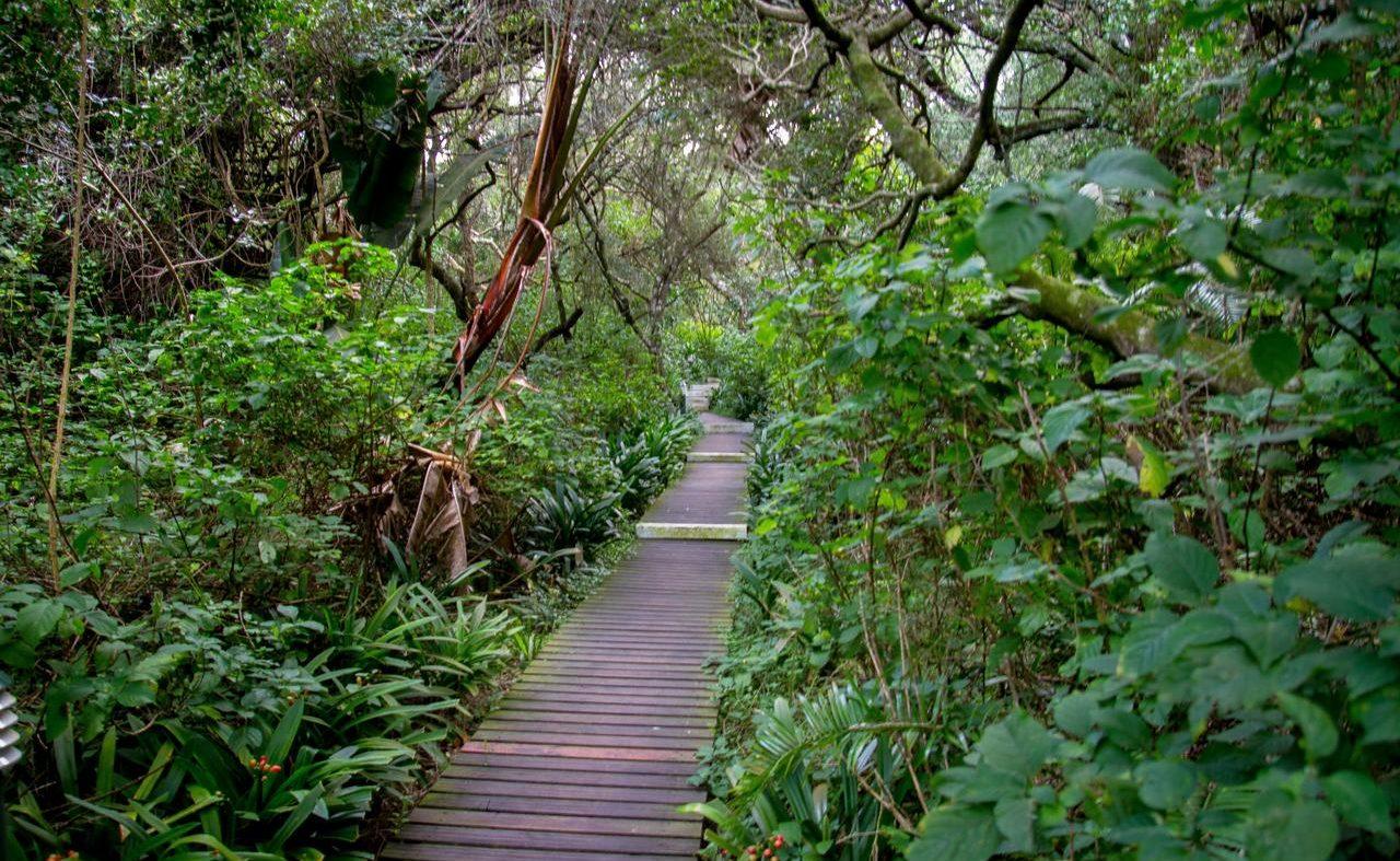 Tropische Garten der Prana Lodge