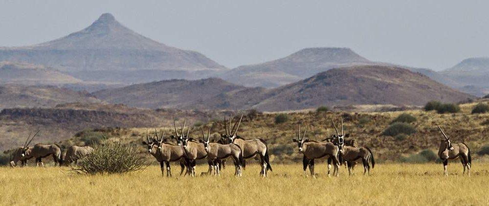 Exklusive Reisen in das Damaraland mit Namibia Spezialist Genuss Touren