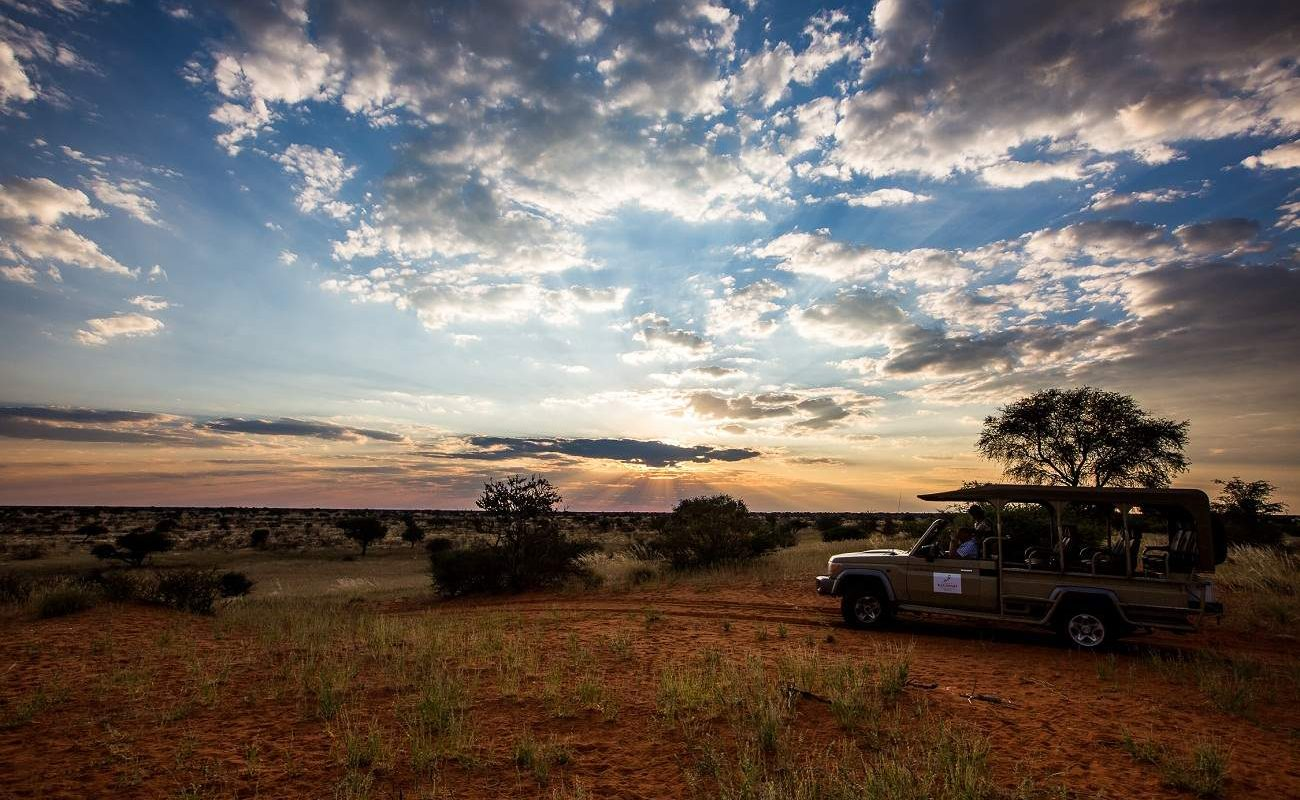 Pirschfahrt in der Kalahari