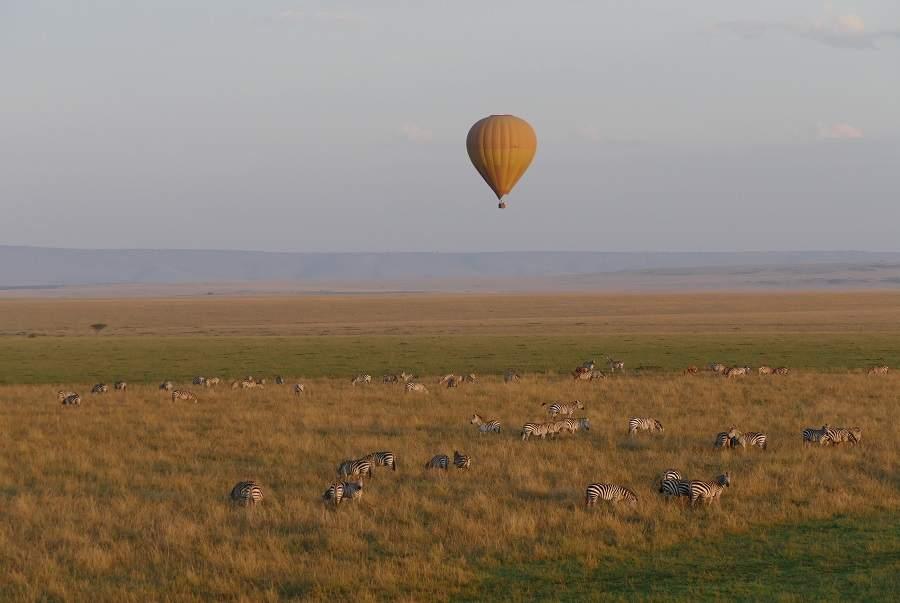 Zebras und Heißluftballon in der Masai Mara