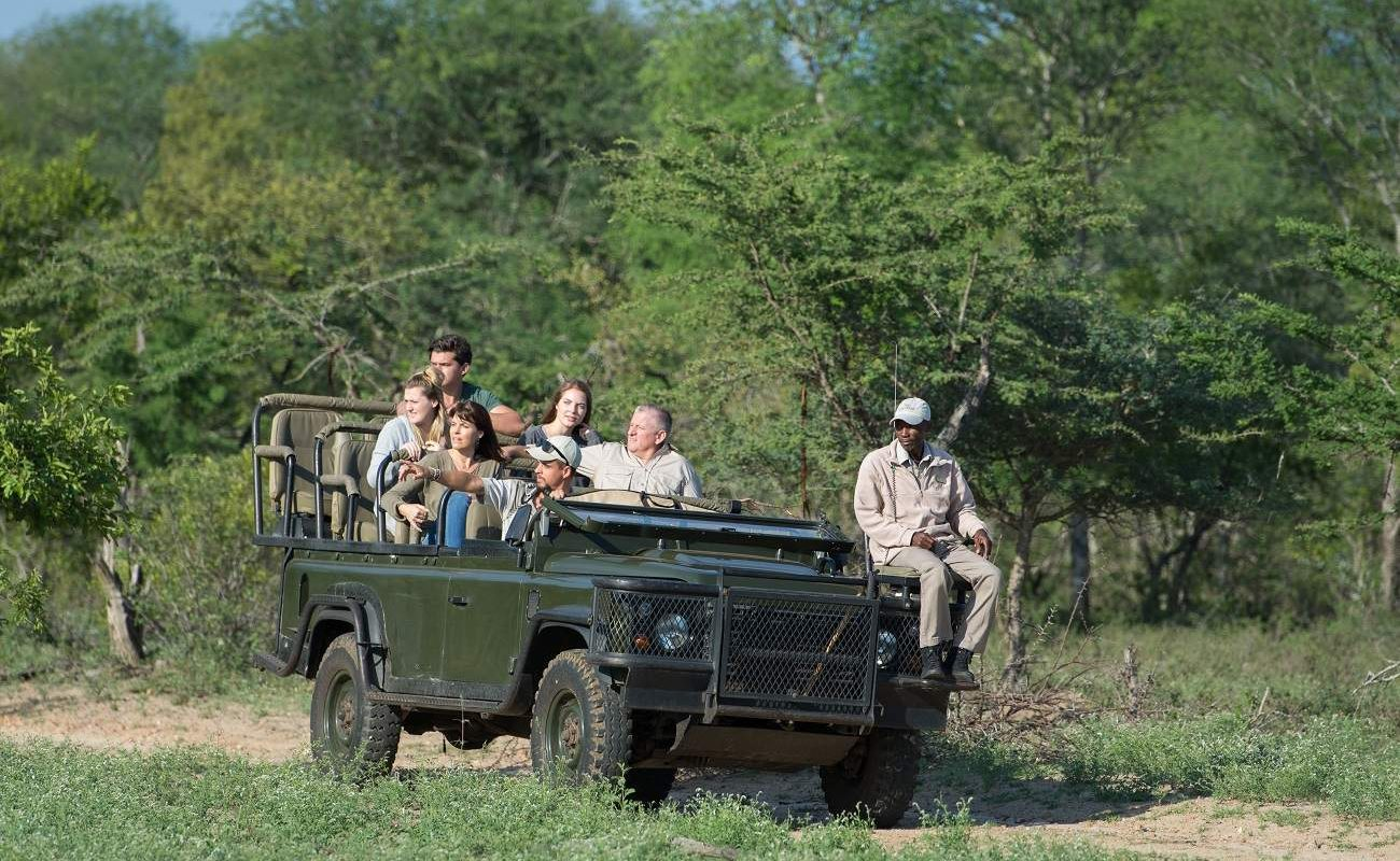 Pirschfahrt im Thornybush Game Reserve
