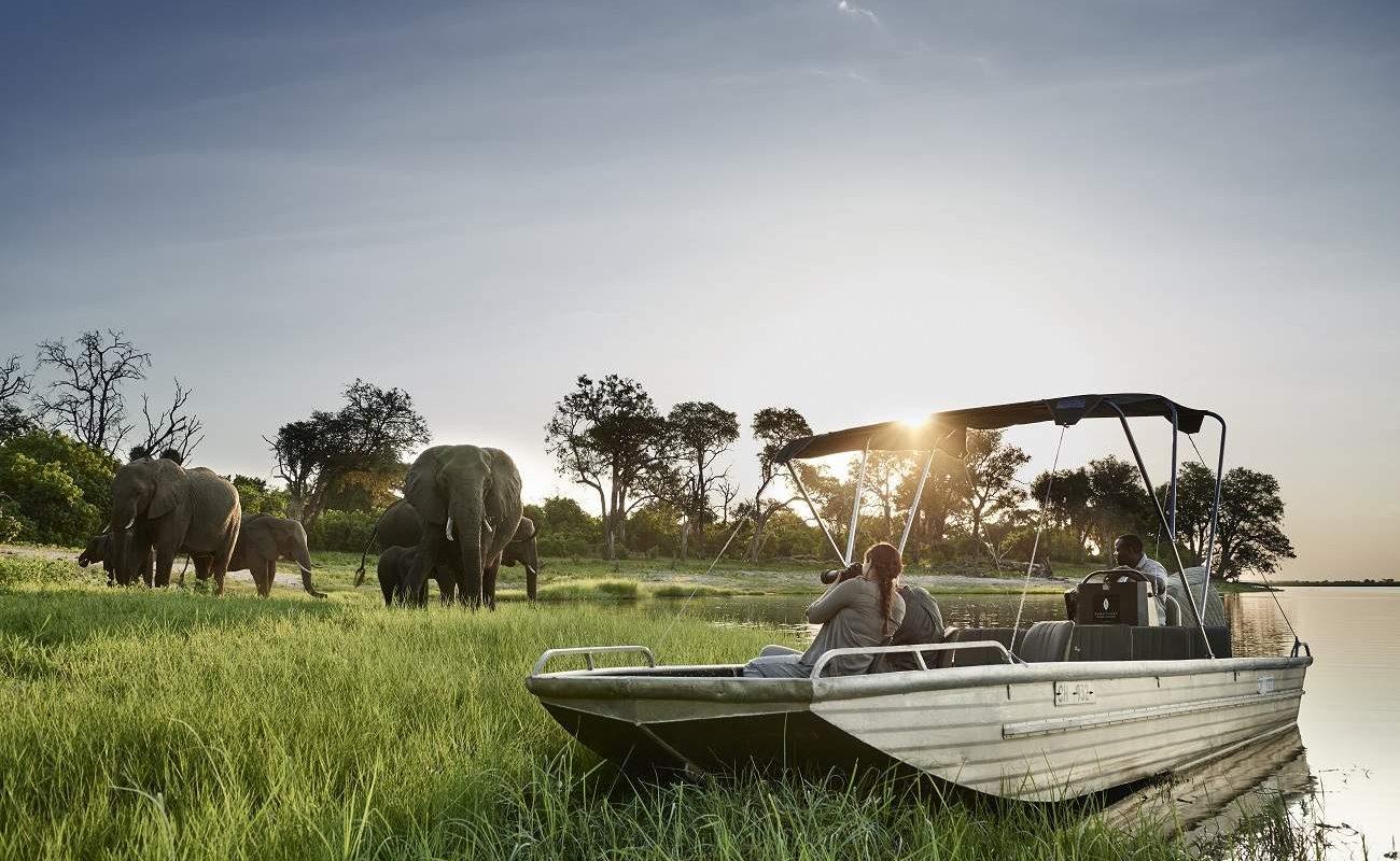 Bootsfahrt Chobe River Front mit Sanctuary