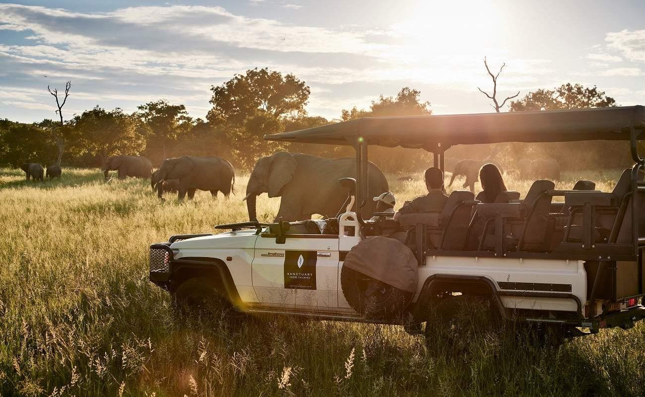 Pirschfahrt im Geländewagen im Chobe National Park
