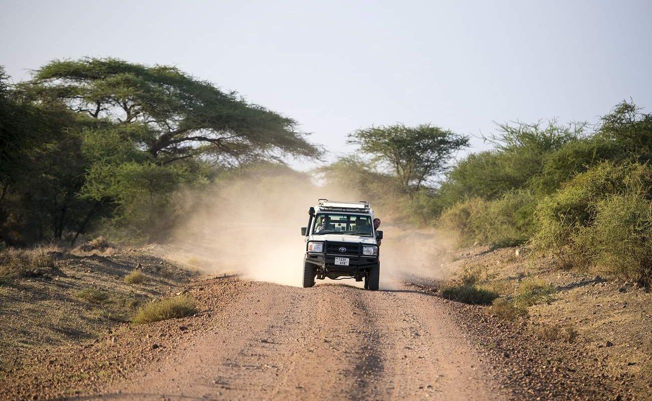 Geländewagen im Arusha Nationalpark