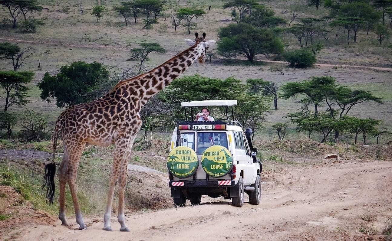 Pirschfahrt im Arusha Nationalpark