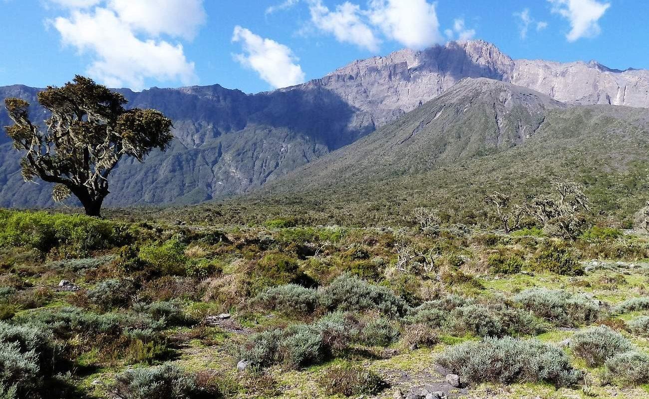 Mt. Meru Tansania