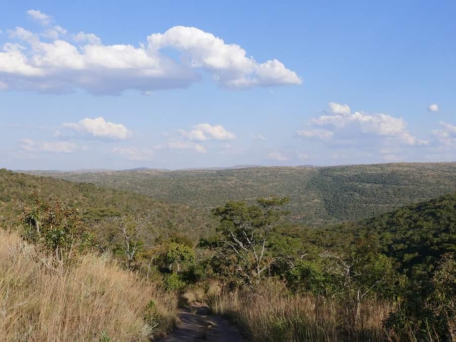 Landschaft des Welgevonden Game Reserves