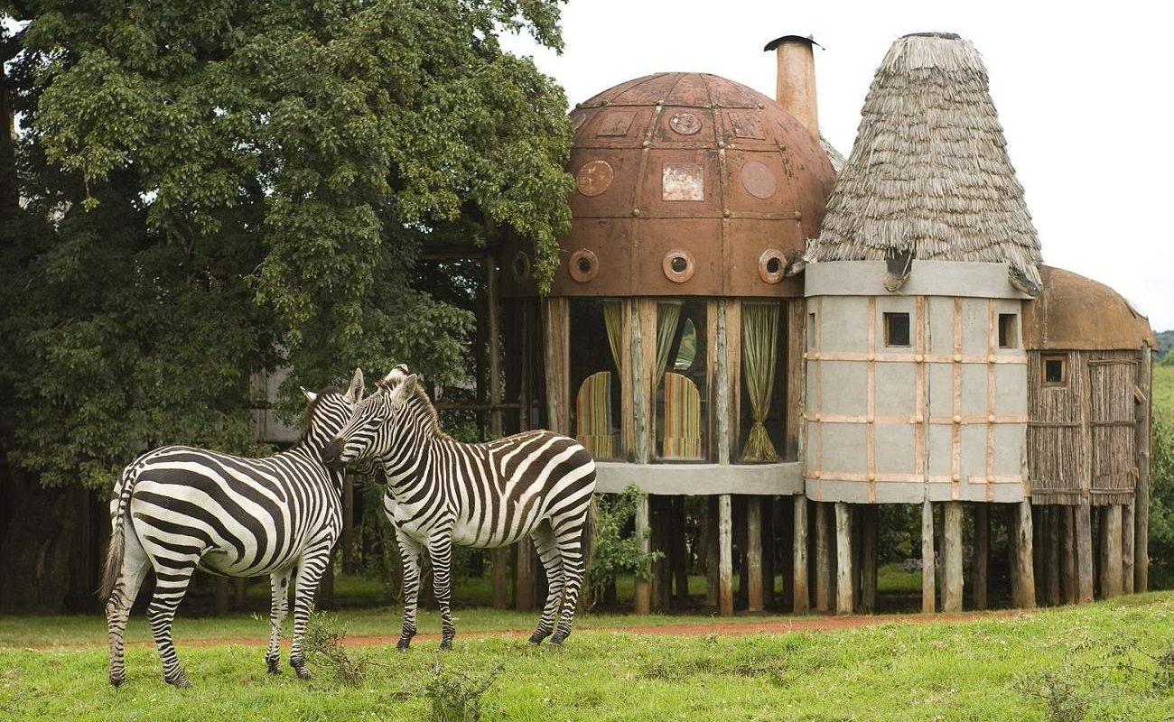 Zebras vor der Suite der Luxuslodge am Krater