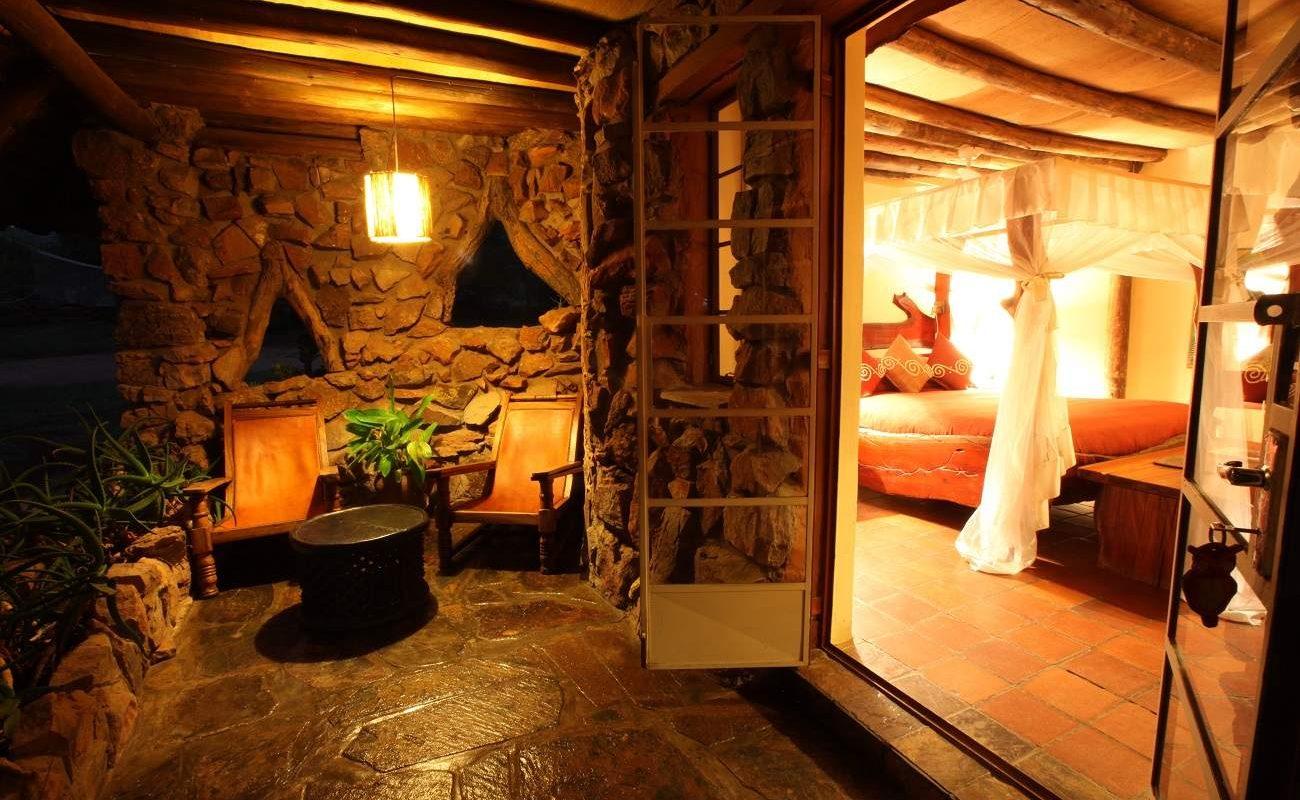 Davidson Suite Ant's Nest