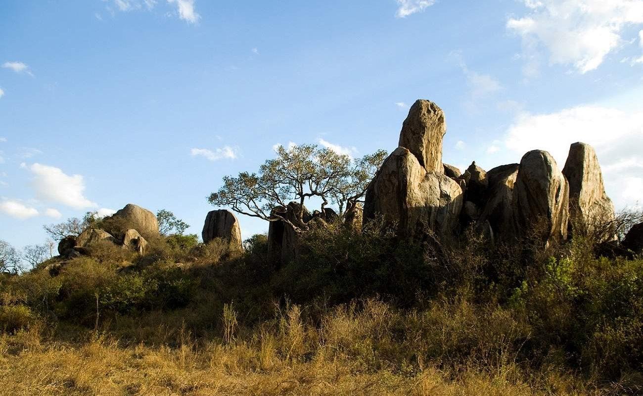 Moru Kopjes Serengeti nahe Dunia