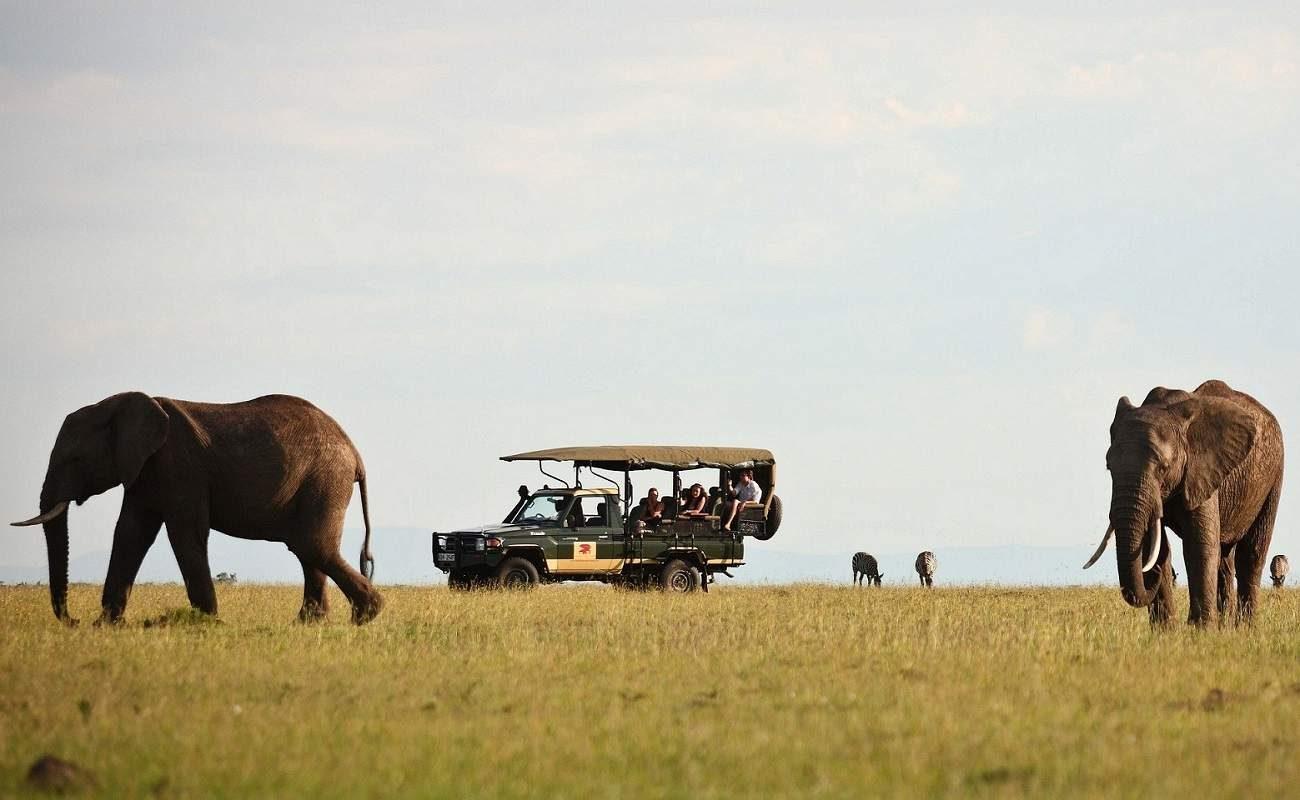 Elefanten im der Masai Mara