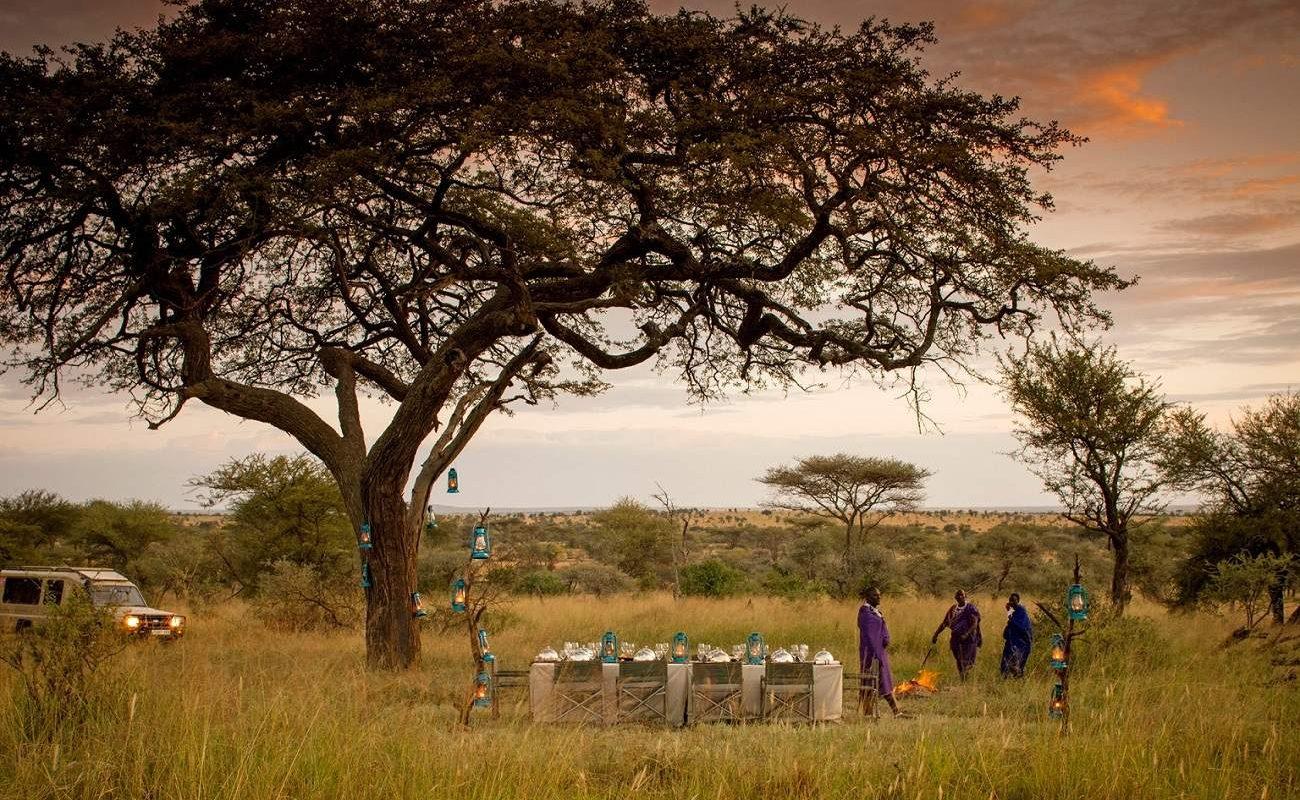 Bush Dinner - ein exklusives Erlebnis in Tansania