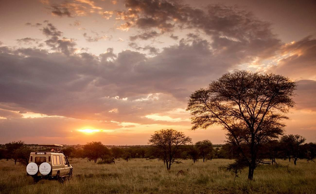 Sundowner in der Serengeti
