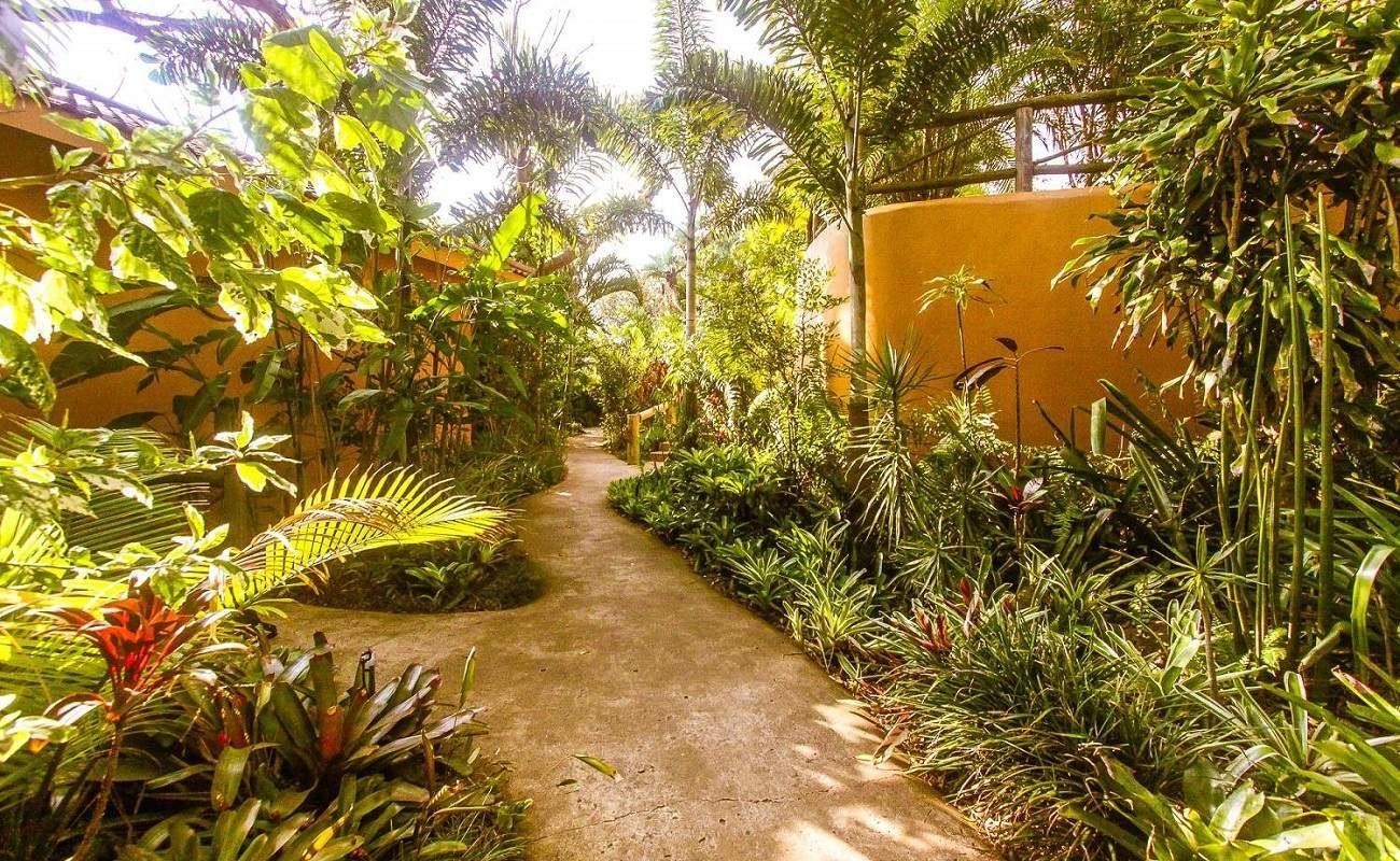 Der üppige Garten von Kwalucia