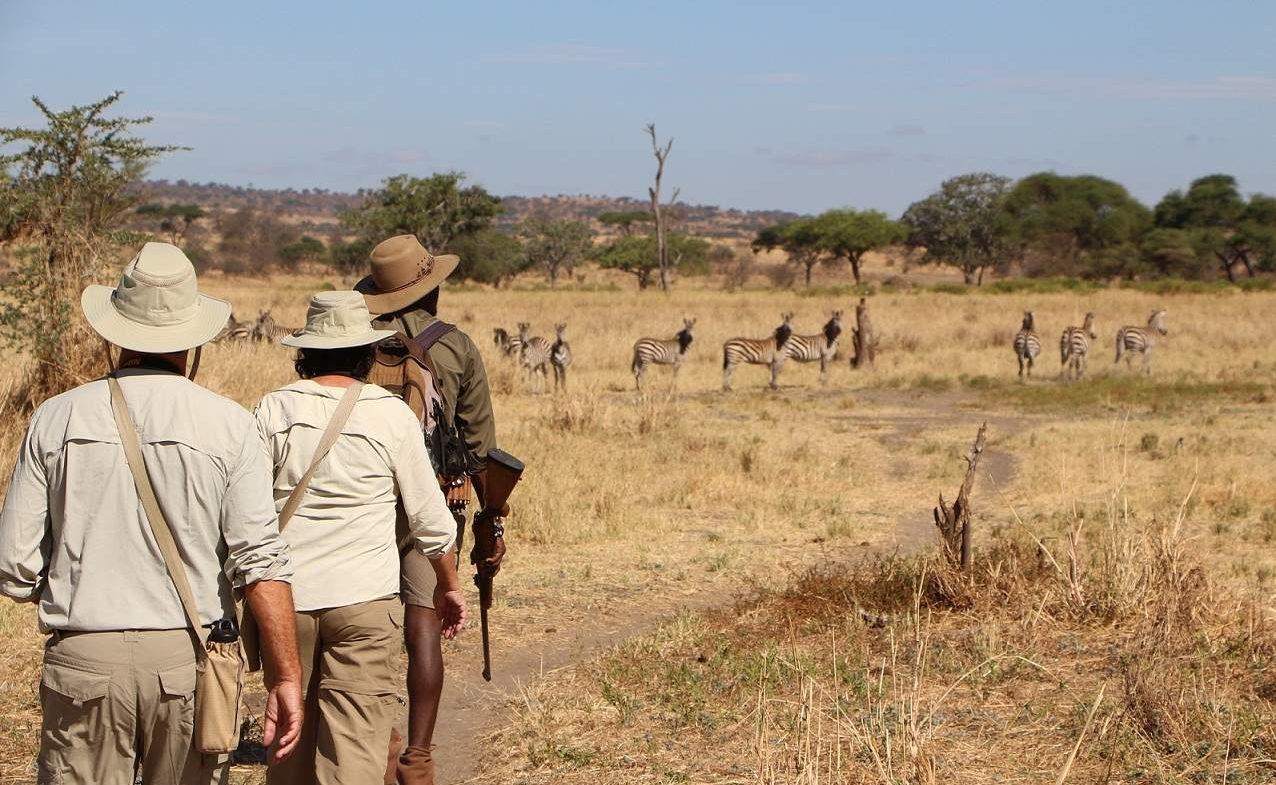 Mit bewaffneten Rangern auf Pirschwanderung in Tansania