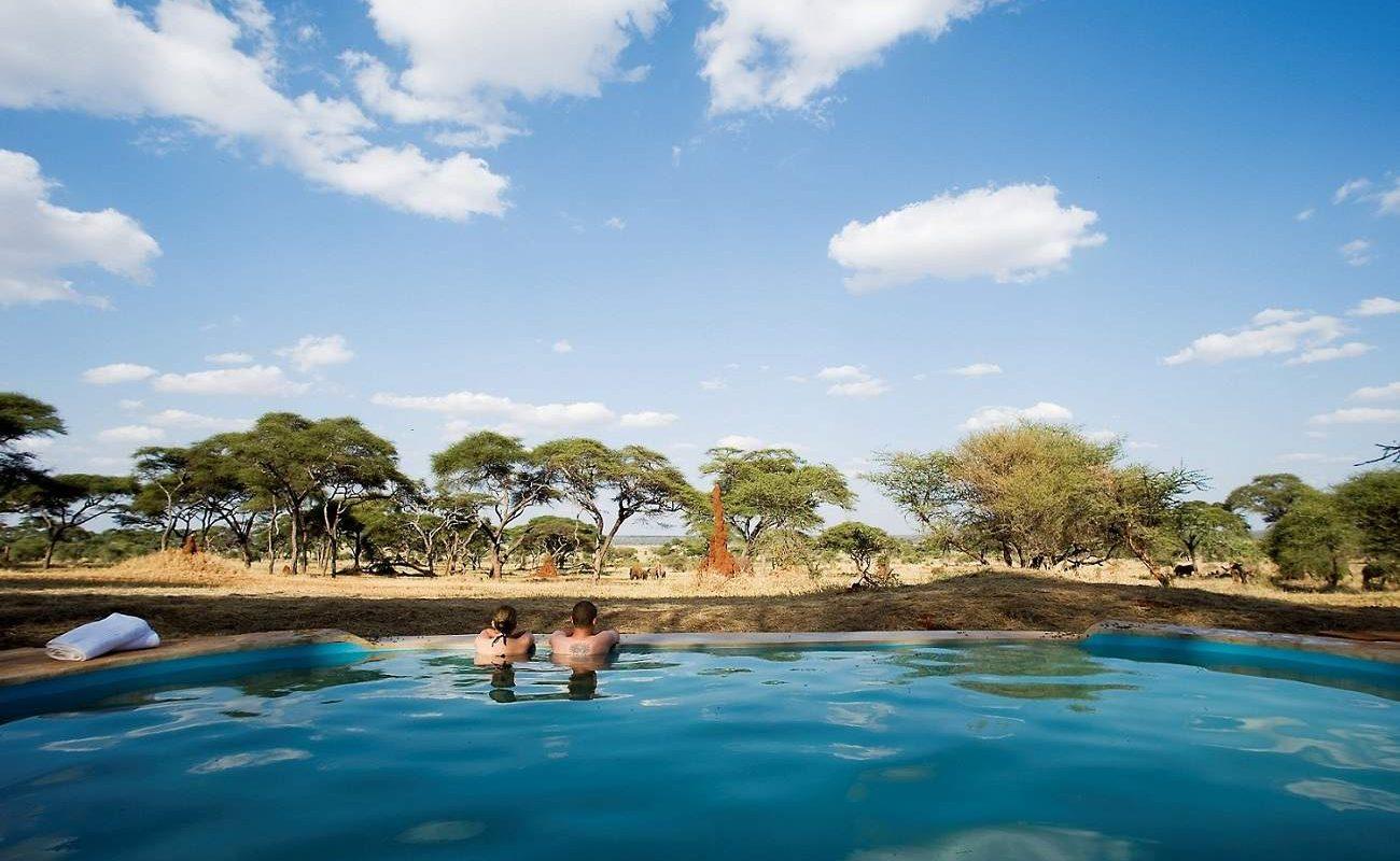 Vom Pool aus kann man oft die Tiere des Tarangire sehen