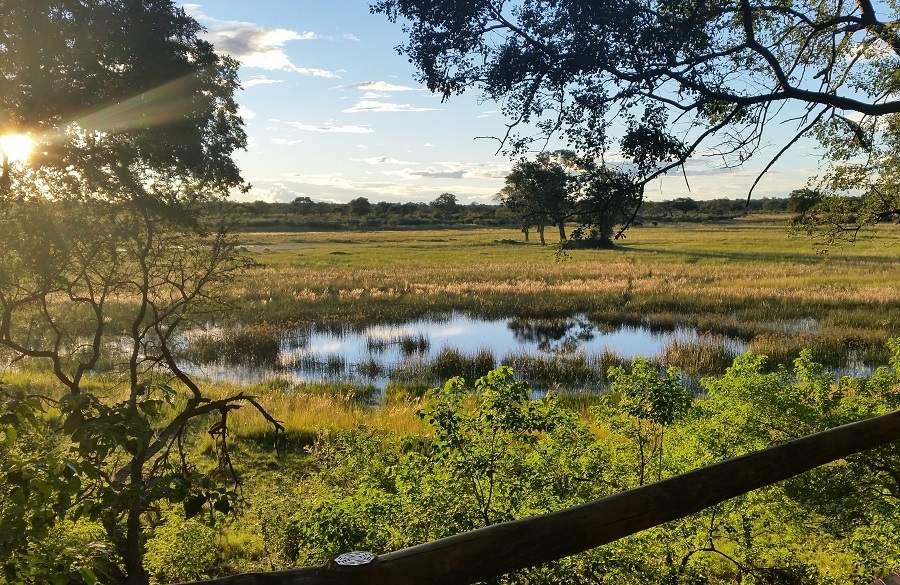 Grüne Caprivi Streifen - Zambezi Region