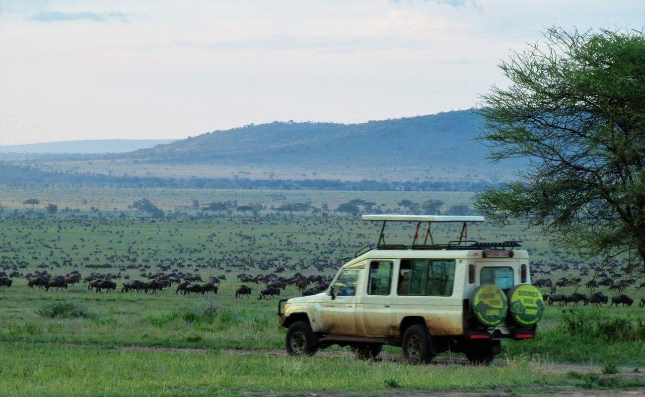 Safaris im Geländefahrzeug