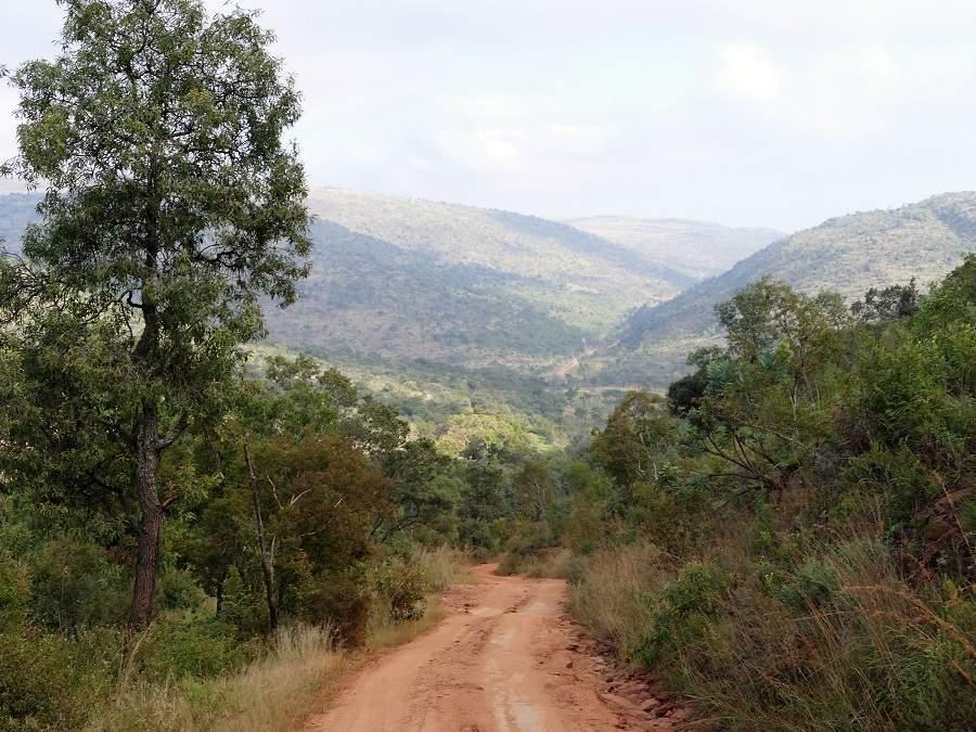 Die Landschaft des Welgevonden Game Reserves