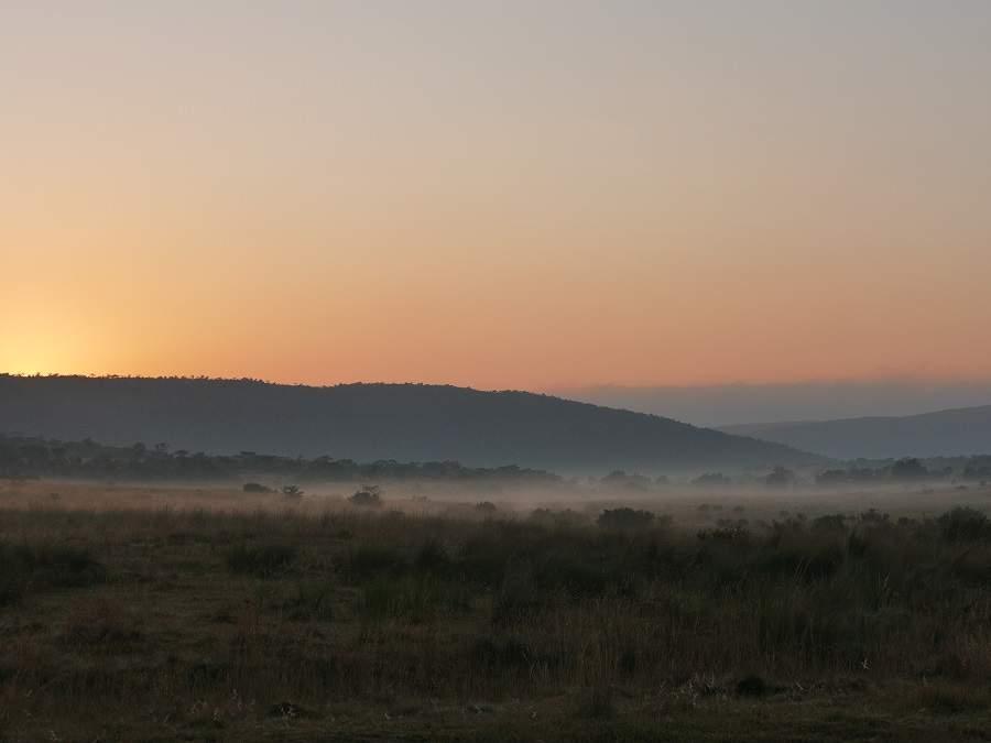 Sonnenaufgang im Welgevonden Game Reserve