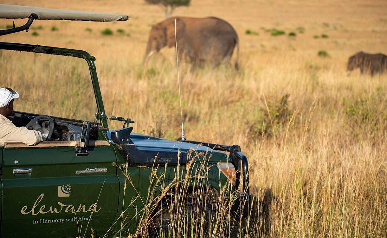 Pirschfahrt in der Masai Mara