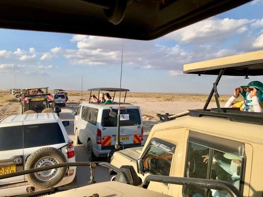 Safarifahrzeuge im Amboseli