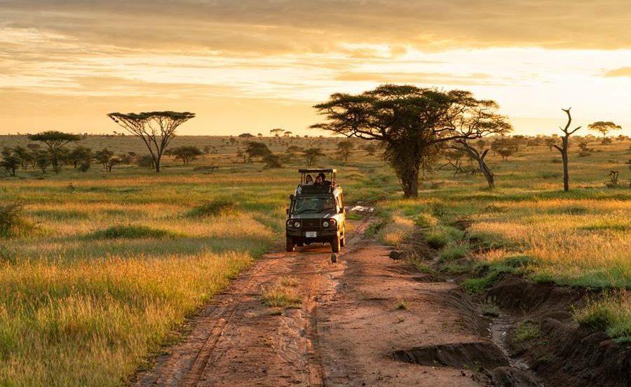 Safari in der Serengeti