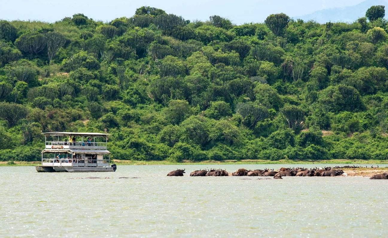 Bootstour auf dem Kazinga Chanel in Uganda