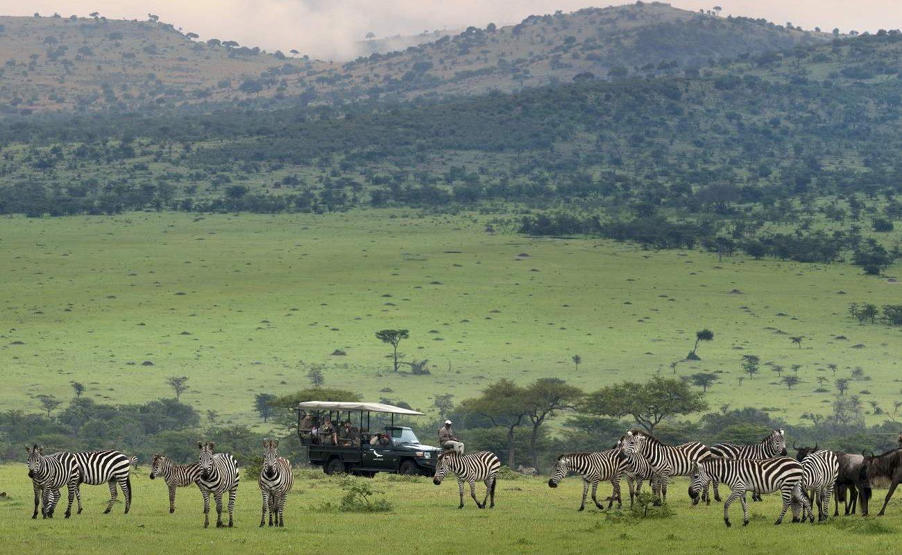 Große Migration in der Serengeti