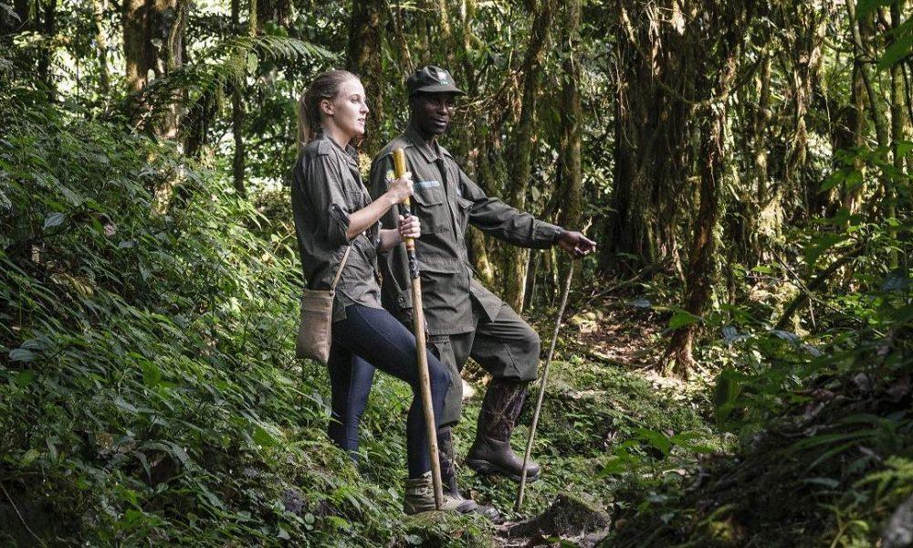 Die schönsten Lodges im Bwindi Impenetrable Forest