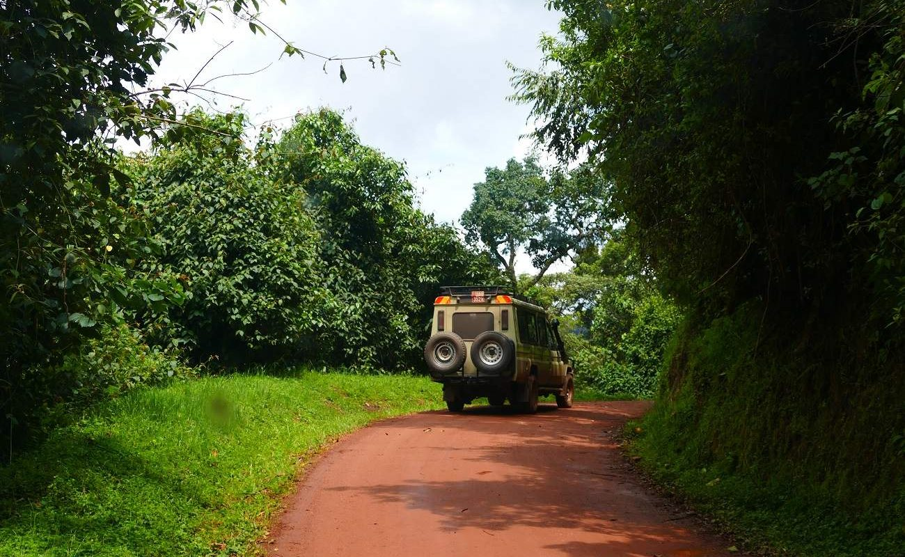 Fahrt im Bwindi