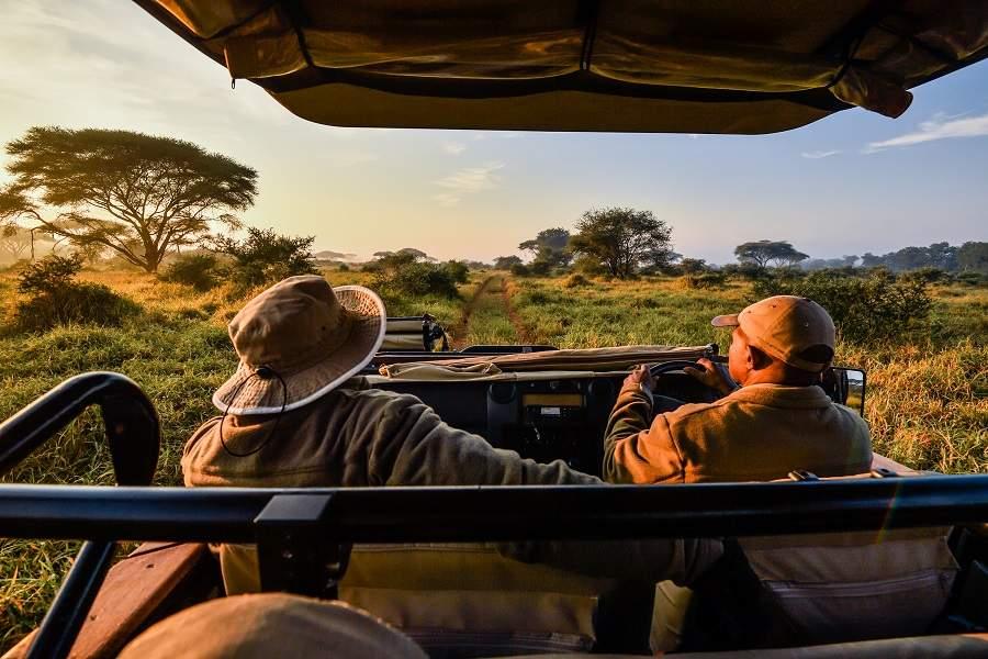 Virtuelle Safaris in Corona Zeiten