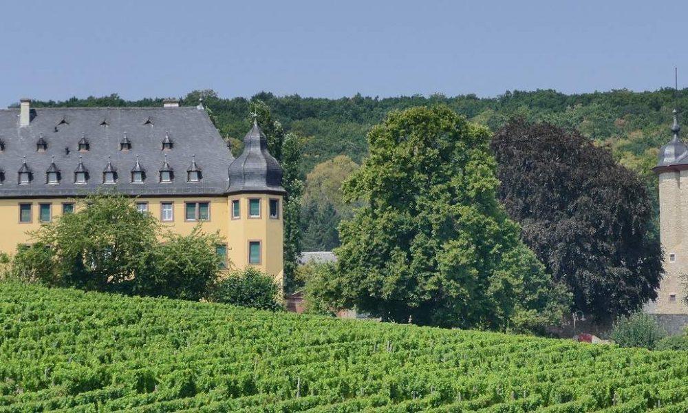 Reisen in die Weinregionen von Deutschland