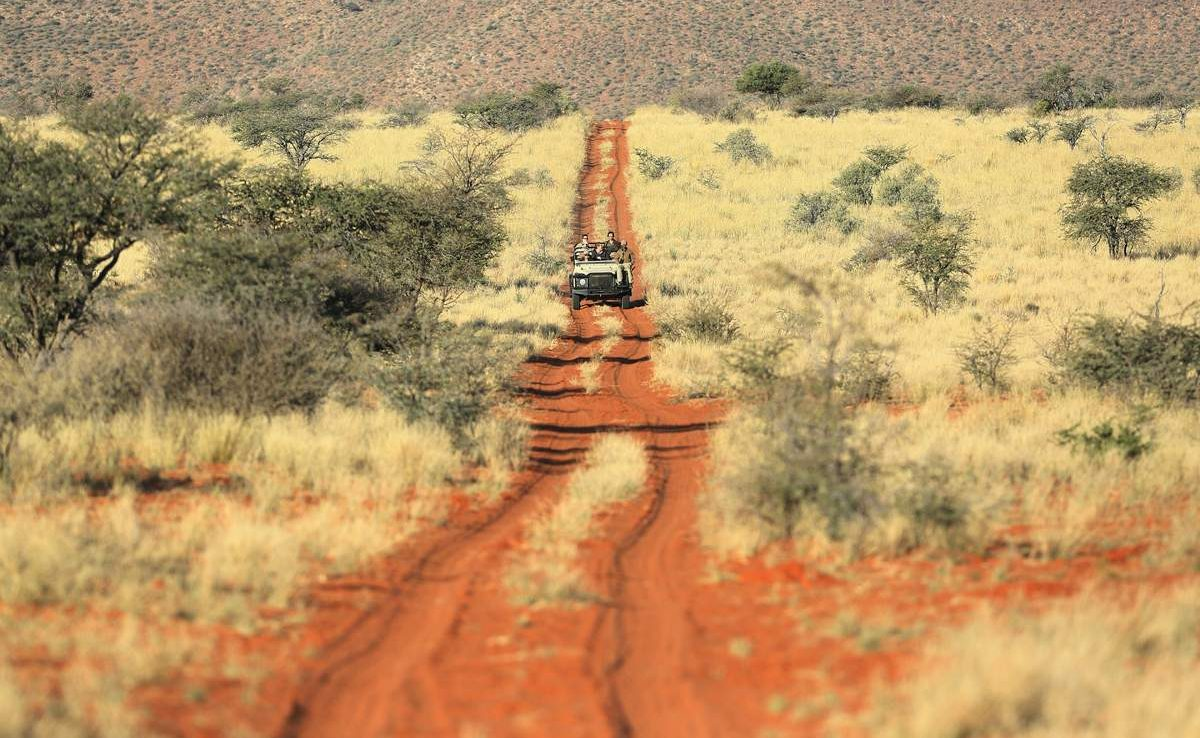 Safari in der Grünen Kalahari des privaten Wildreservates