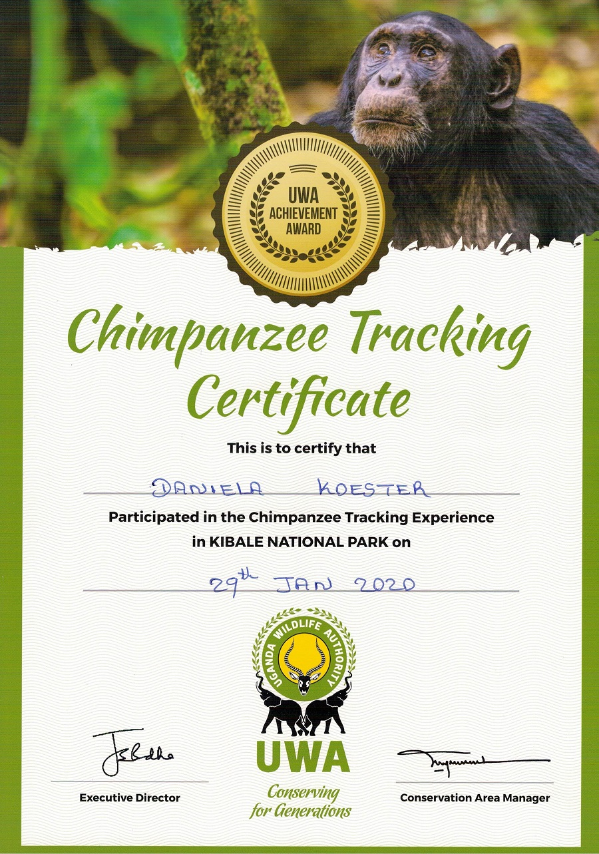Urkunde Schimpansen-Tracking