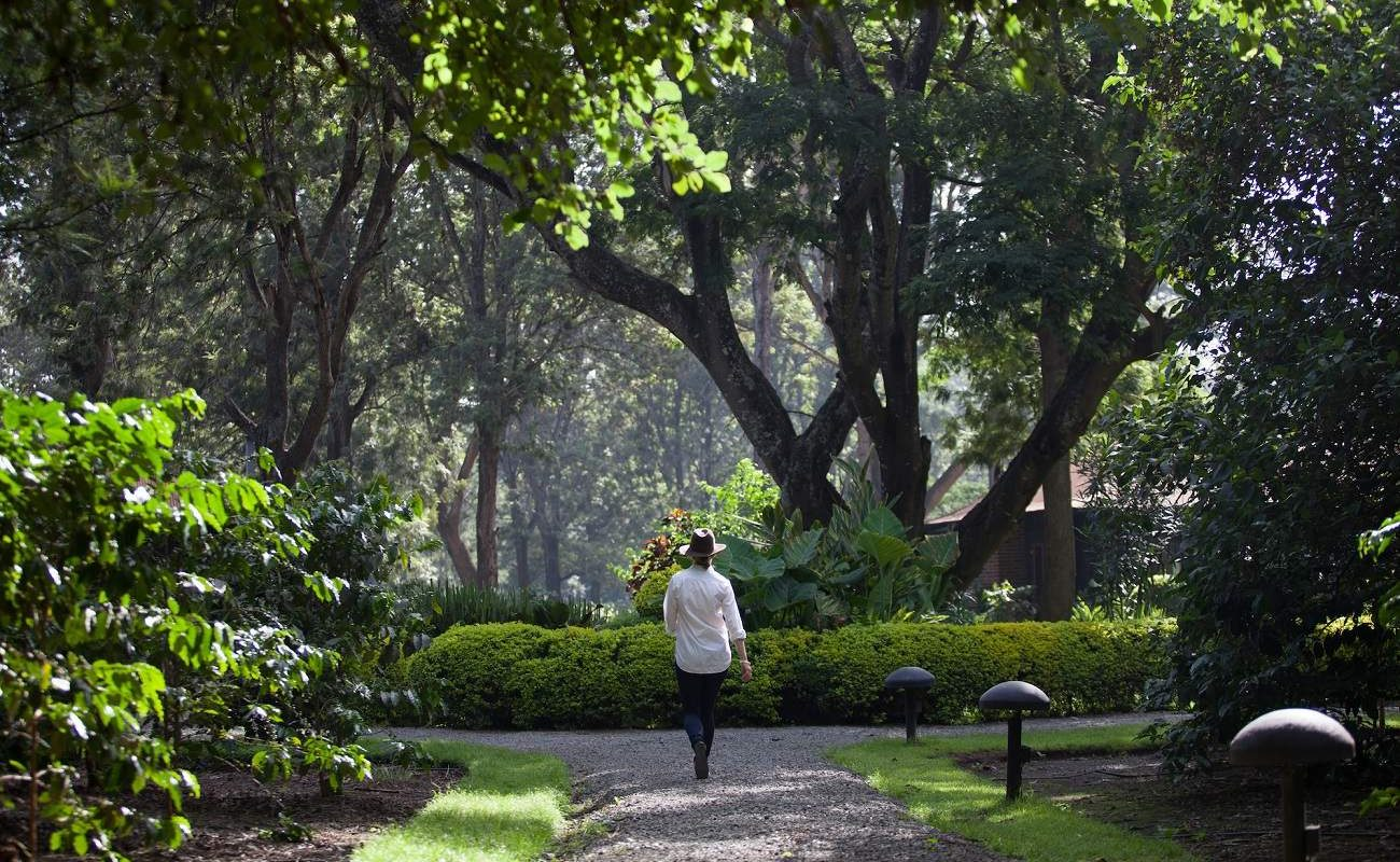 Spaziergang im Garten der Coffee Lodge