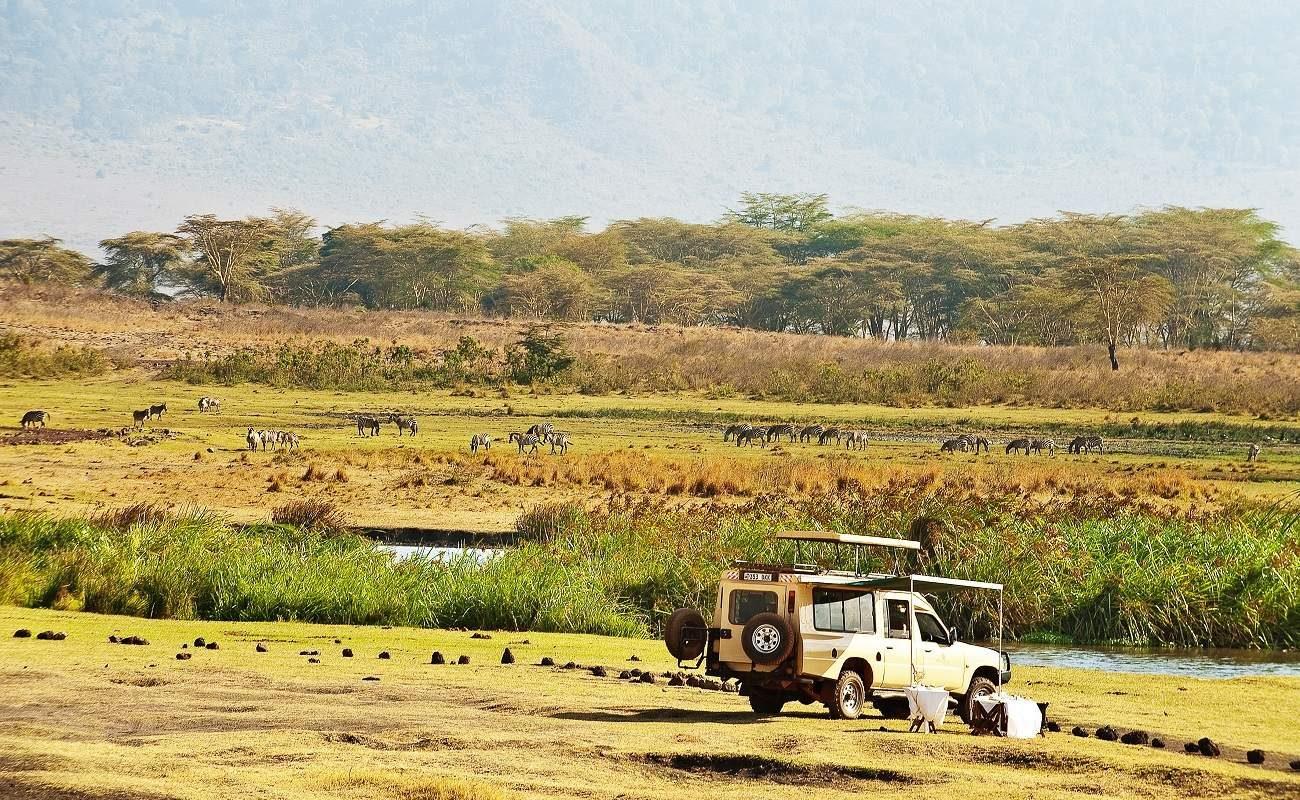 Pirschfahrt im Ngorongoro Krater