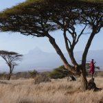 Verantwortungsvolles Reisen nach Afrika während der Corona-Pandemie
